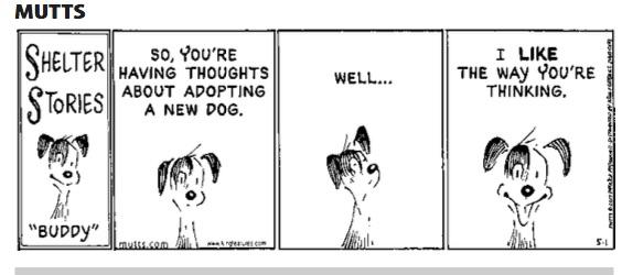 thinking of adopting??
