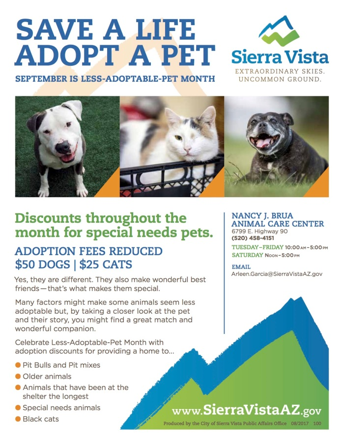 2017 Less Adoptable Pet Month Flyer sfs-1