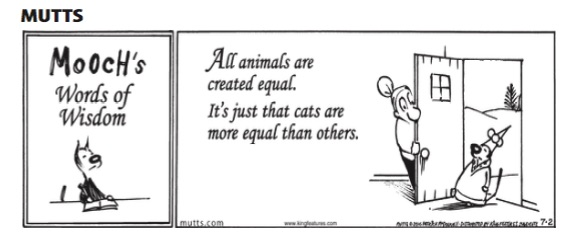 cats equal